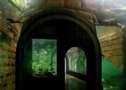 Donau_Aquarium01