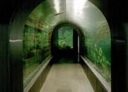 Donau_Aquarium02